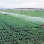حث المزارعين على ترشيد استخدام المياه وزراعة المحاصيل الملائمة