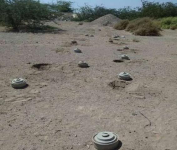 مقتل ست نساء إثر انفجار لغم في مالي