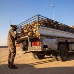 """""""الأمن البيئي"""": ضبط 2.3 طن من الحطب المحلي بحوزة 41 مخالفاً لنظام المراعي"""